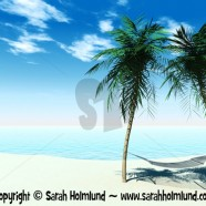 Hammock between palmtrees 2